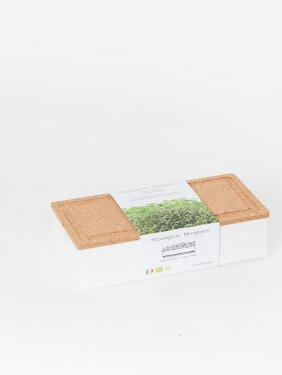 Grow Box Duo Rúcula e Agrião