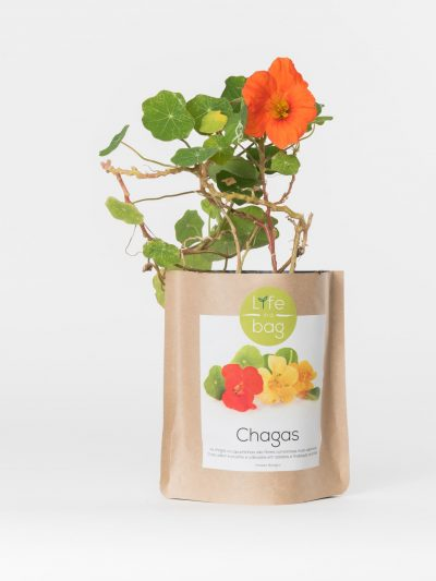 Grow Bag Capuchinhas