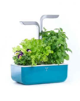 Horta Urbana Véritable® Smart Edition - Blue